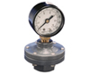 Plast-O-Matic® Gauge PVDF Gauge Guard Thd